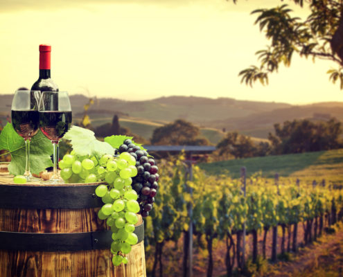Star Beverages Vineyard